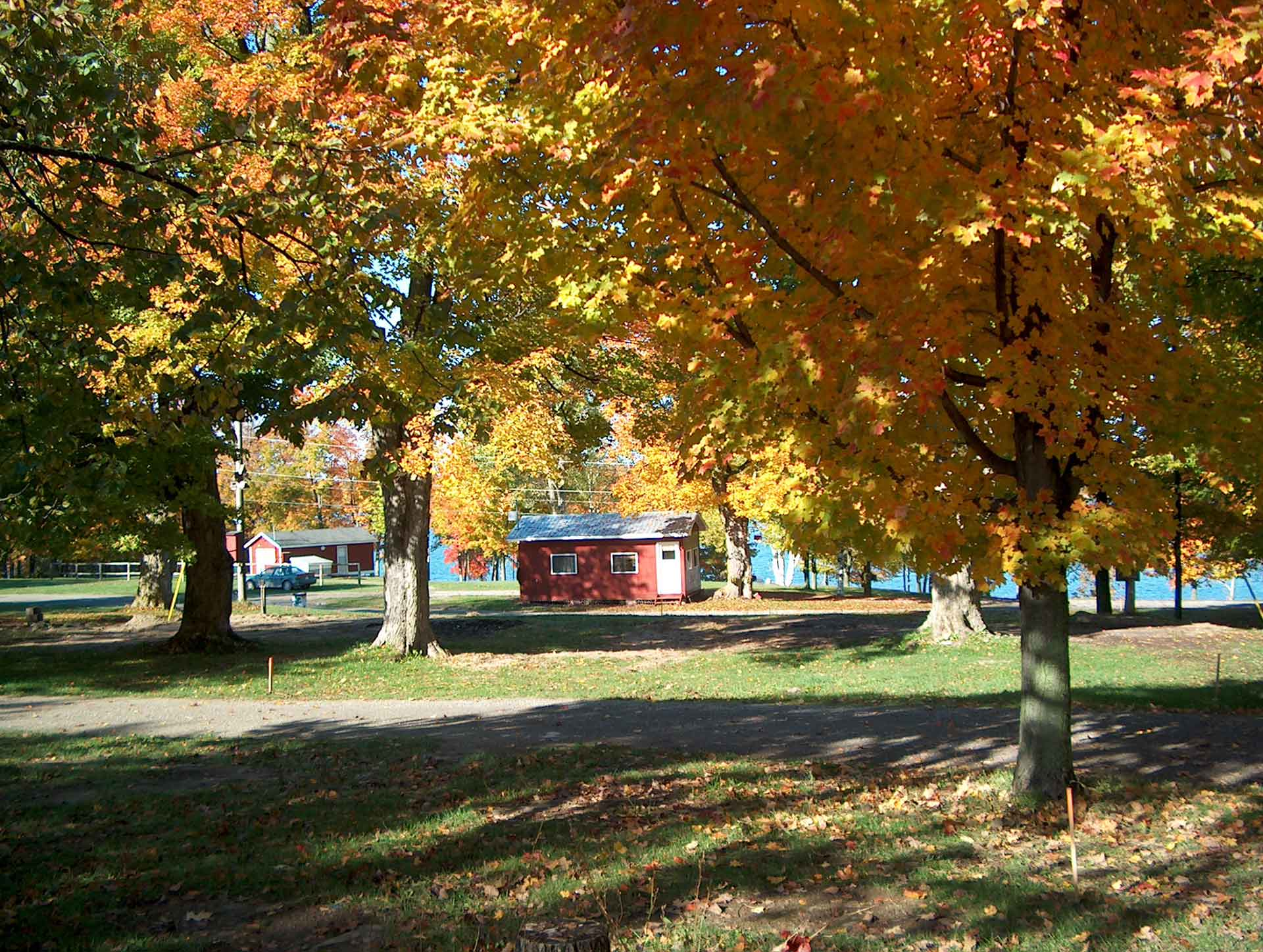 Bellamy Park